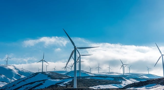 Onshore vs Offshore Wind: What Are the Differences and Facts?