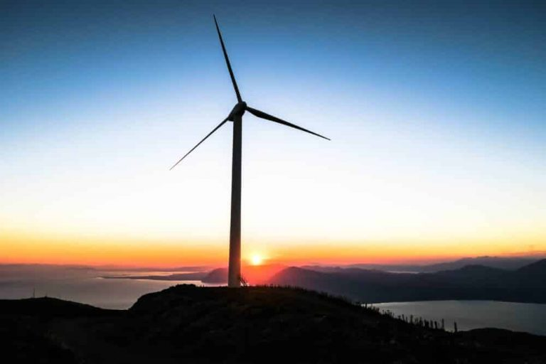 Arcadia Power Review 2021: Go Clean Energy & No Installation Needed