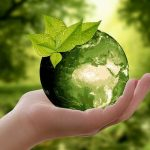 What is Sustainability? 13 Examples to Integrate into Your Life