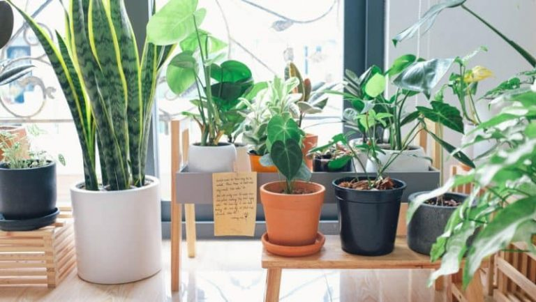 9 Tips for Creating an Eco-Friendly Bedroom