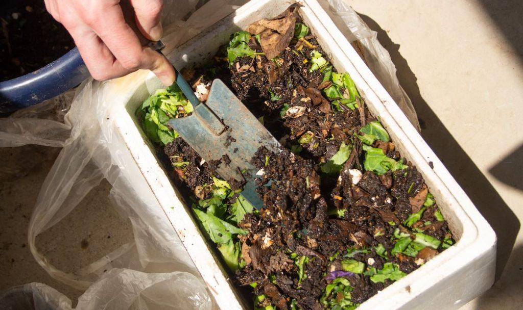 compost in a small bin