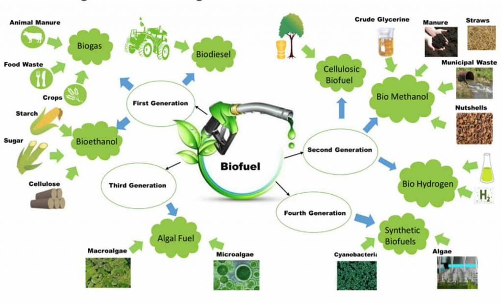 types of biofuel