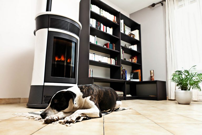 The Best Small Pellet Stoves for 2021